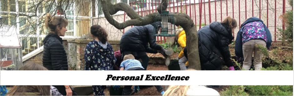 Personal Excellence 1
